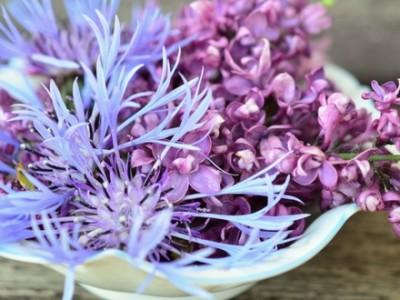 Combattere lo stress con i fiori di Bach
