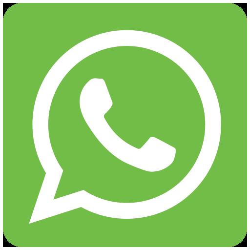 videoconferenze whatsapp